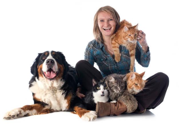 metier auxiliaire bien-être animalier
