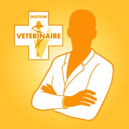 veterinaire-nutritionniste-blog