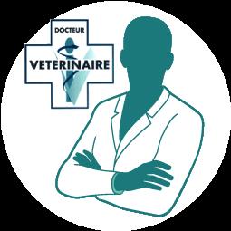 docteur-veterinaire-nutritionniste-chien-chat