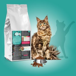 croquettes chat adulte veterinaire