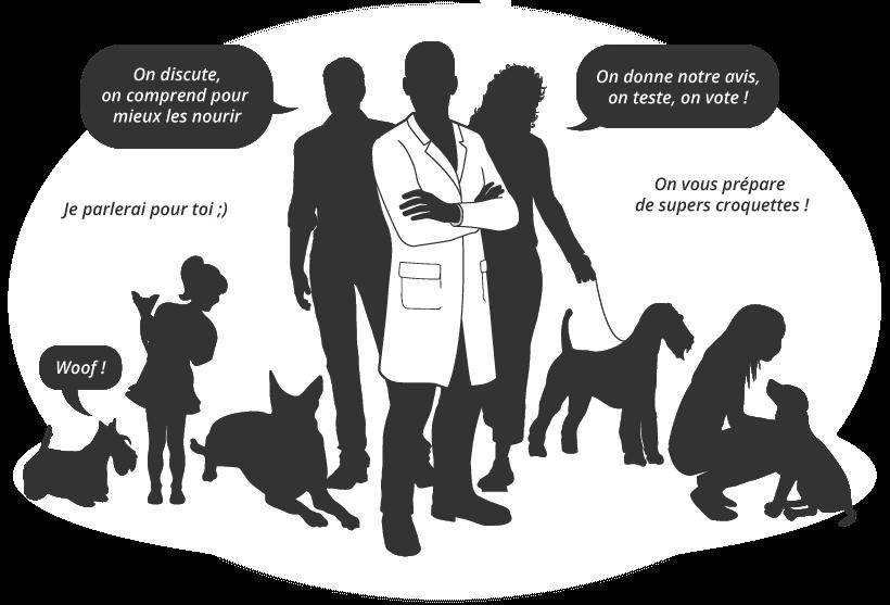 croquettes chien senior participer recette